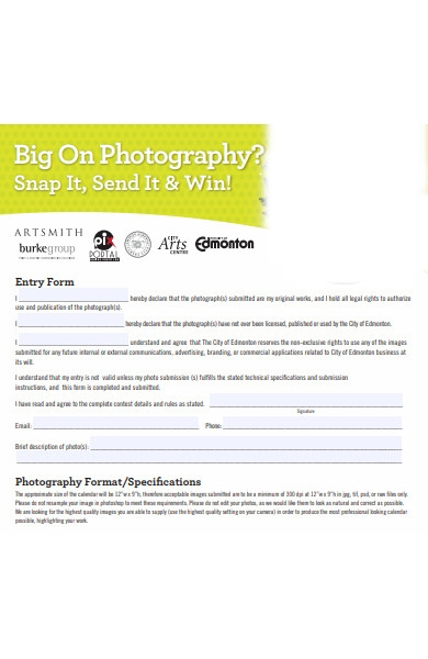 big picture contest entry form