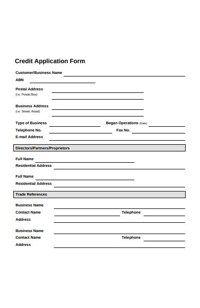 government credit application form