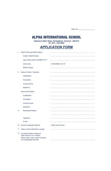 international school application form in pdf