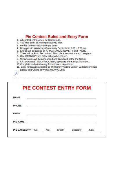 Free 32 Contest Entry Forms In Pdf Ms Word Excel