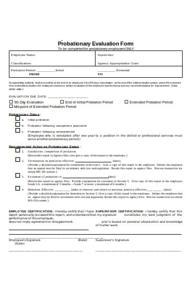 probationary evaluation form