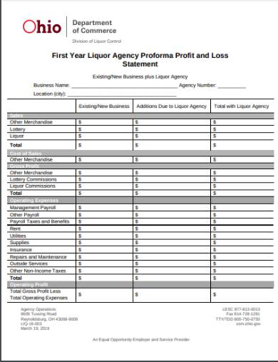 proforma profit and loss statement