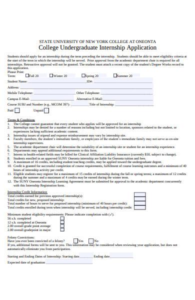 undergraduate internship application form