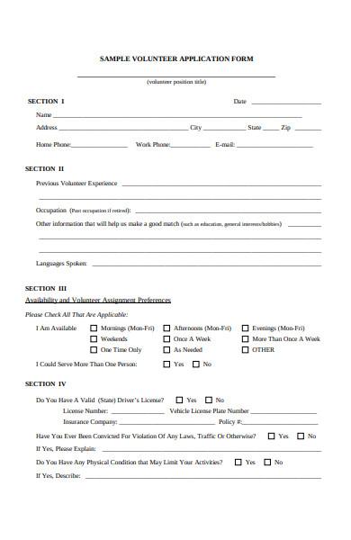 volunteer experience form