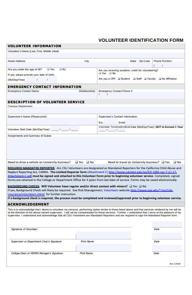 volunteer identification form