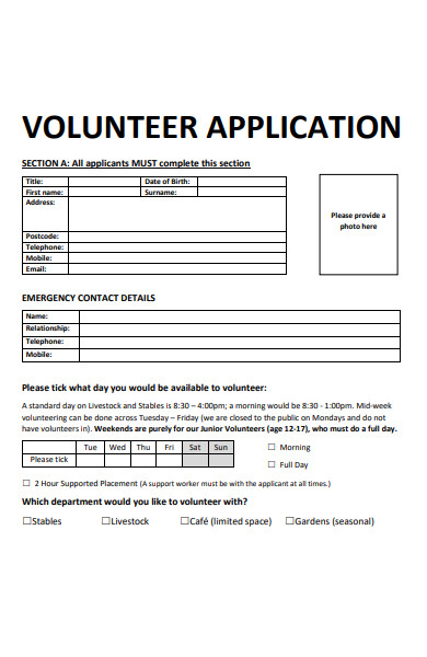 volunteer work experience application form