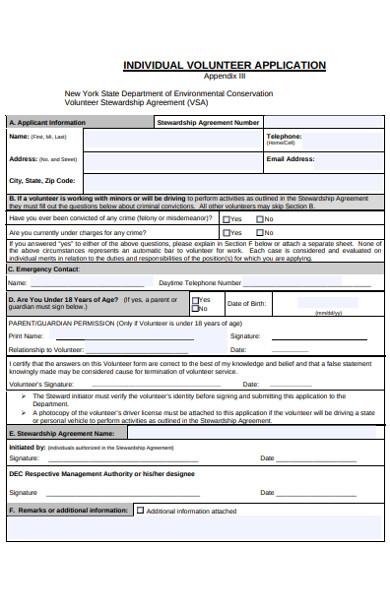 individual volunteer application form