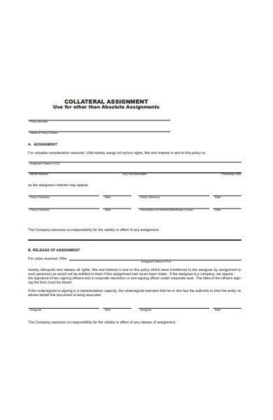 absolute assignments in pdf