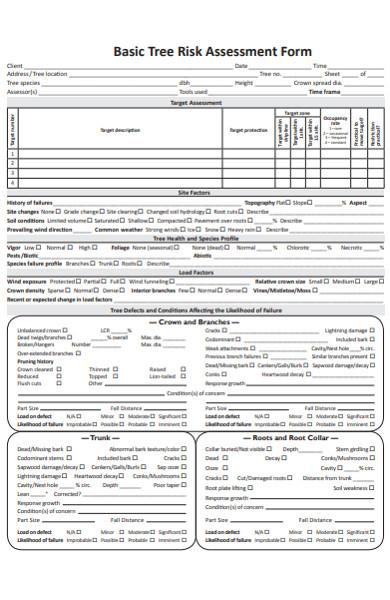 basic tree risk assessment form