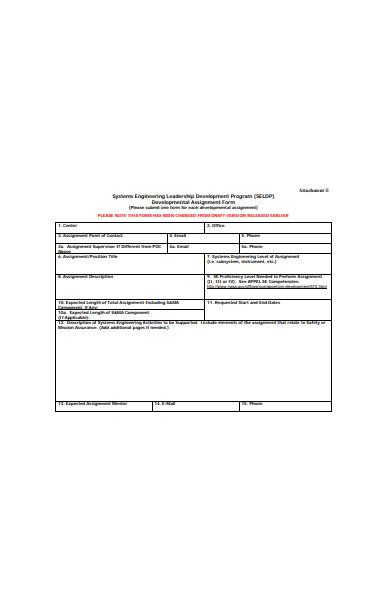 developmental assignment form