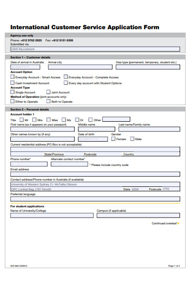 international customer service application form