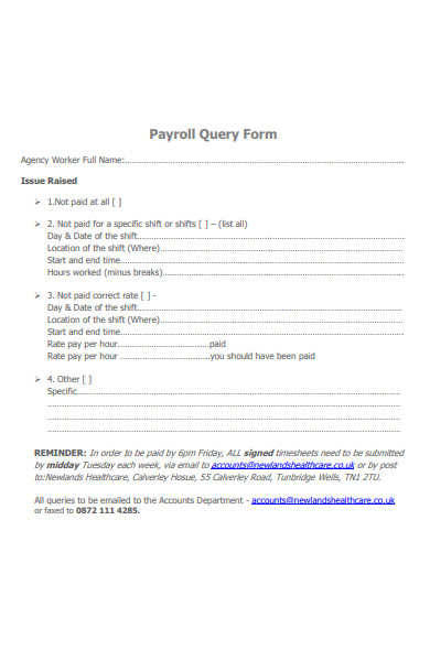 payroll query form