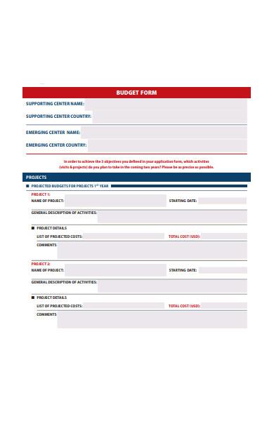 professional budget form