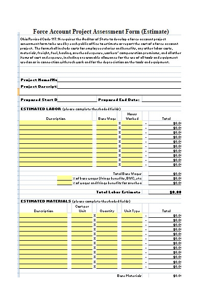 project assessment form