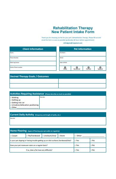 rehabilitation therapy form
