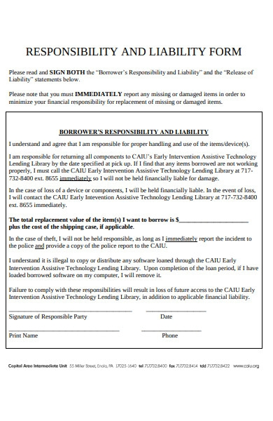 responsibility and liability form
