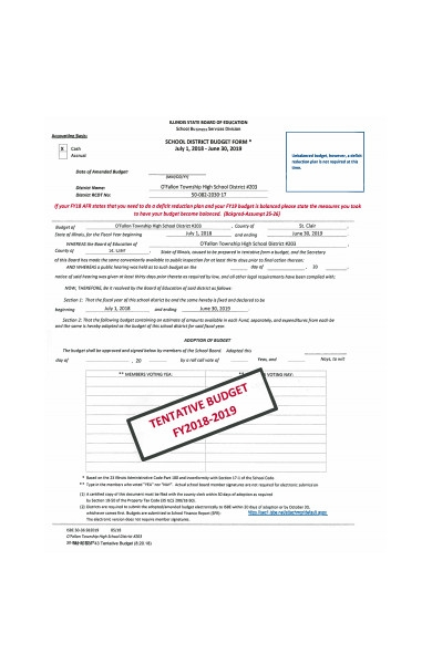 school district budget form sample