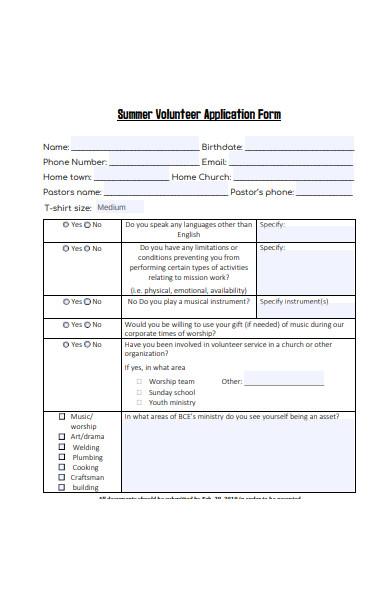 summer volunteer application form
