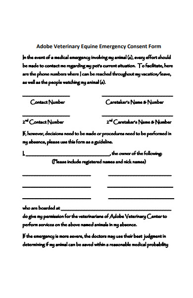 veterinary emergency consent form
