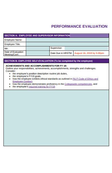 basic performance evaluation form