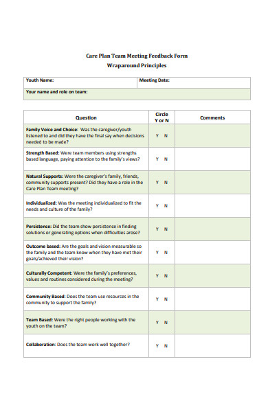 care plan team meeting feedback form