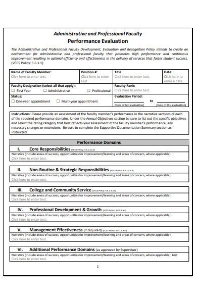 faculty performance evaluation form