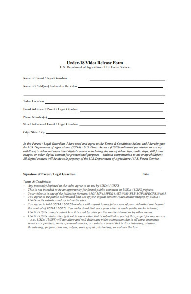 general video release form