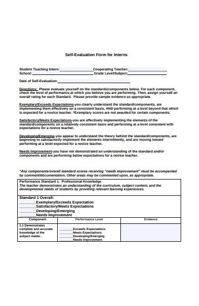 interns self evaluation form