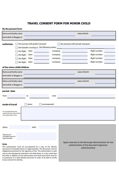 minor child travel consent form