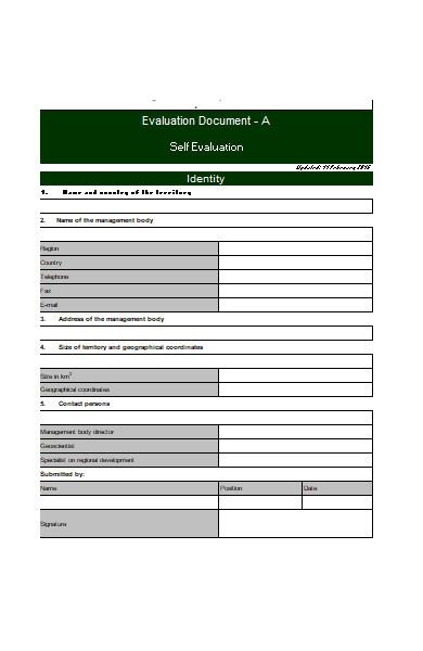 professional self evaluation form