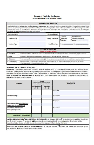 public service performance evaluation form