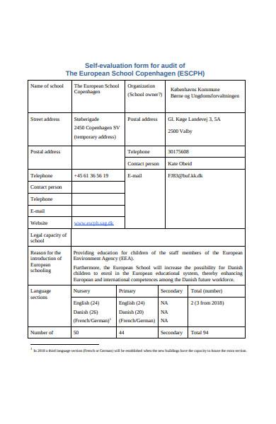 self evaluation form for audit