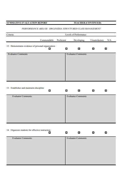 teacher evaluation report form