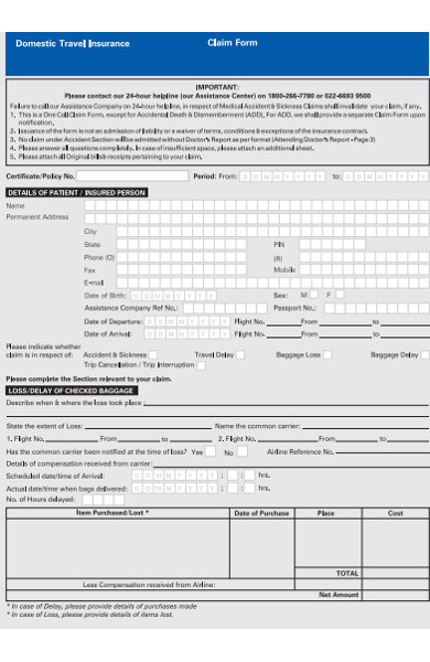 domestic travel claim form
