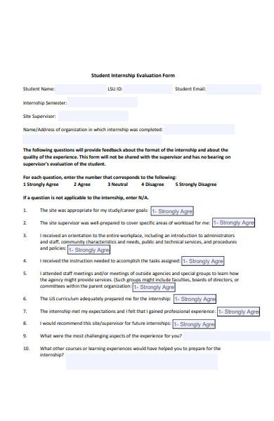 internship evaluation form sample